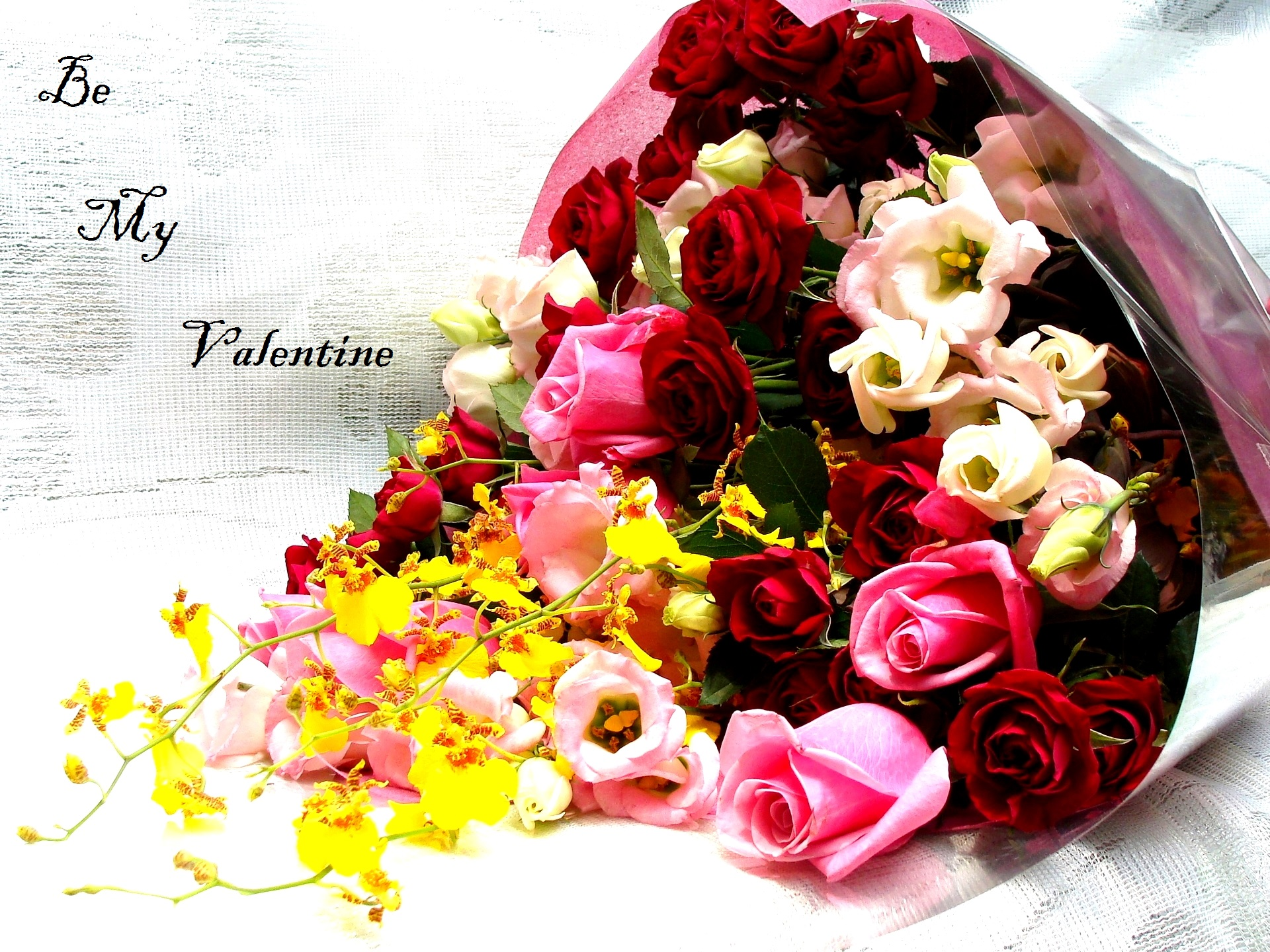 Valentines Day Images For Whatsapp Dp Profile Wallpapers Free